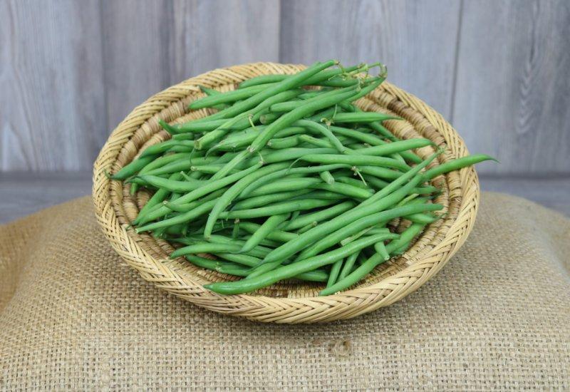 Haricots verts (cueillis main)