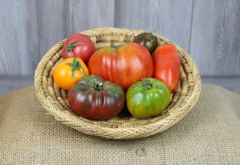 'Mix' tomates anciennes