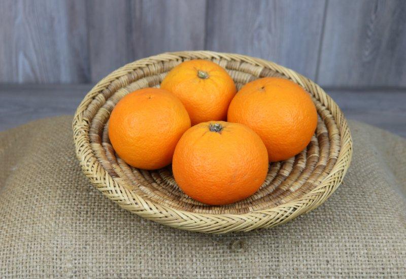 Oranges corses x4 ('Salustiana')