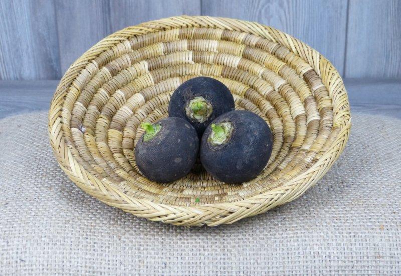 Radis noirs (ronds)
