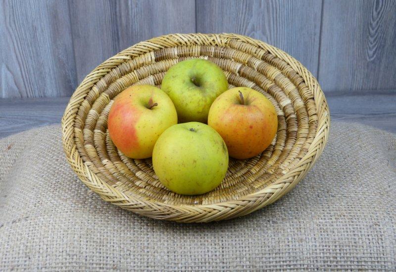 Pommes Goldrush x4