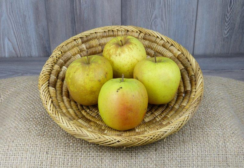 Pommes Golden x4