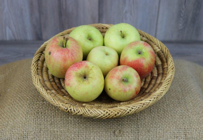 Pommes Delbard estivale (C3*)