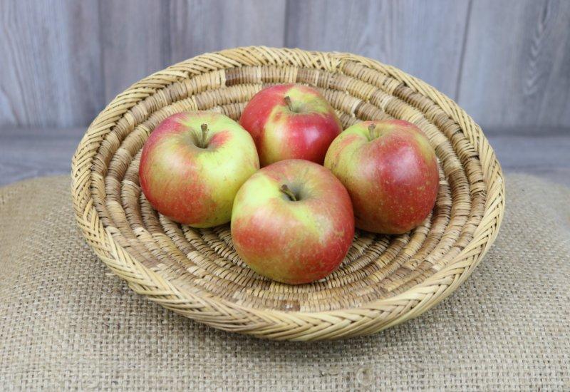 Pommes Idared x4