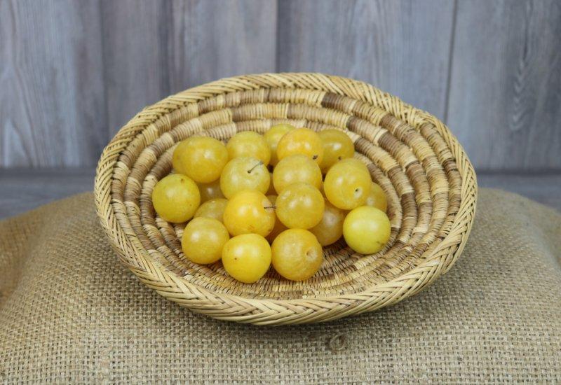 Prunes golden